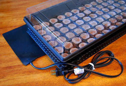 seed tray and heating mat