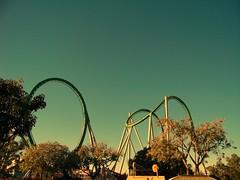 Life is a roller coaster. (Beatriz Mello) Tags: park parque usa sun tree verde green sol yellow day dia amarillo amarelo rbol rollercoaster universal hulk albero tones da rvore tons montanharussa montaarusa gialo