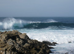 Carmel point surf