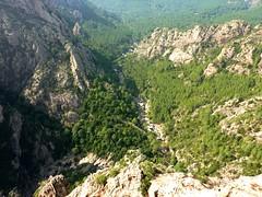 Vire du Castellu : plate-forme au-dessus de la Vacca en amont du canyon