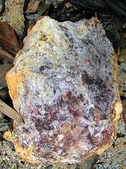 Epithermal quartz vein (Mangiwau) Tags: green sumatra indonesia banda aloe mercury kali air traditional mining illegal saya gunung aceh mane hijau emas anak sungai perak peti masyarakat meulaboh raksa penambangan sigli pidie atjeh tutut izin tanpa geumpang woyla merkuri ujoen
