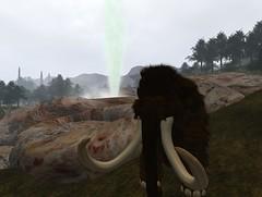 Bath day (Valentine Easterwood) Tags: mammoth present geyser avaria