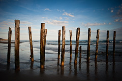 St Clair Groynes in colour (VineetMenon) Tags: sunset newzealand colour landscape stclair dunedin groynes nikond700