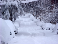 snowbound in Greenfield