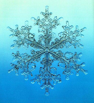 snowflakelklkkl