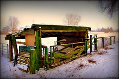 Shelter (ottosohn) Tags: schnee winter snow green field germany farming landwirtschaft feld meadow wiese farmland grn agriculture shelter husbandry naturschutzgebiet niederrhein moers unterstand landschaftsschutzgebiet platinumheartaward trynka vanagram schwafheimermeer ottosohn platinumbestshot 1001nightsmagiccity mygearandmepremium mygearandmebronze mygearandmesilver mygearandmegold mygearandmeplatinum mygearandmediamond mygearandmeplatinium