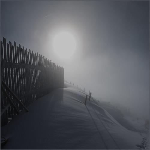 zadymka / blizzard