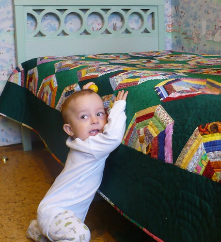 Fiodor & spiderweb quilt
