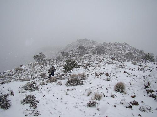 Los Reales nevado (8)