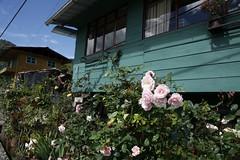 BAEZA2 (Ministerio de Cultura y Patrimonio del Ecuador) Tags: baeza fotoseduardovalenzuela