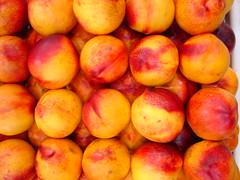 Peaches (matthewgrocott) Tags: peaches