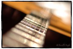 The Classical (Proleshi) Tags: blur neck 50mm nikon dof bokeh guitar naturallight bach segovia classical strings shallow nylon fretboard frets chaconne sooc proleshi