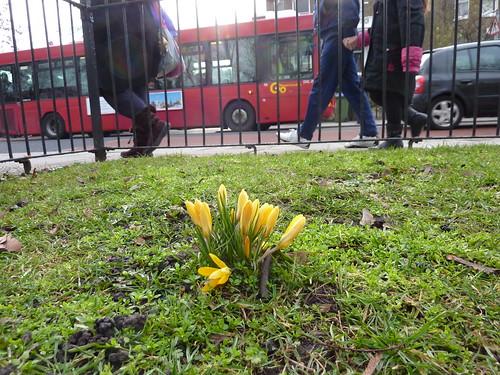 Spring 2010 Mars in  London-33