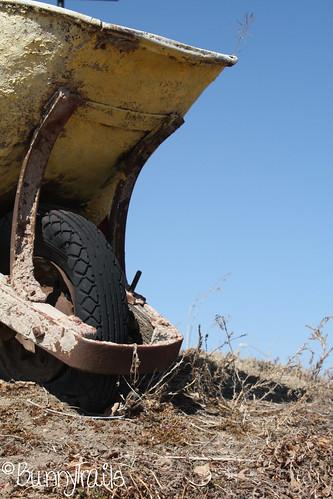63-wheelbarrow sooc