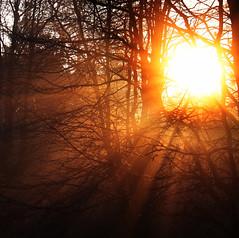 Morning glory, Crosby (Ianmoran1970) Tags: morning sun mist fog canon landscape god glory rays beams 18200mm 50d ianmoran ianmoran1970