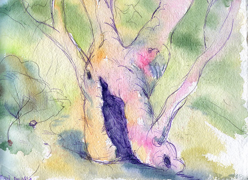 Sunol Park - last sketch