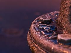 After the Rain (C-Towner) Tags: longexposure macro water night hydrant droplets dof bokeh olympus e3 lakewood zuiko zd zd1454mm ctowner