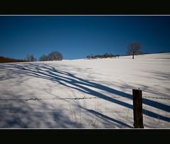 Shadows (MR@tter) Tags: winter shadow snow fence germany landscape deutschland nrw schatten attendorn sauerland 17mm tamron1750 kreisolpe