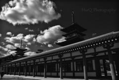 The Double Tower of Yakushi-ji (HarQ Photography) Tags: japan nara yakushiji