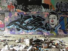 Ziml (Dr. Dog) Tags: dog graffiti very dr tigers osaka aagh cmk dowie tcf ziml japanesegraffiti asiangraffiti
