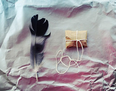 one feather, one secret (wild goose chase) Tags: paper feather string parcel shinypaper