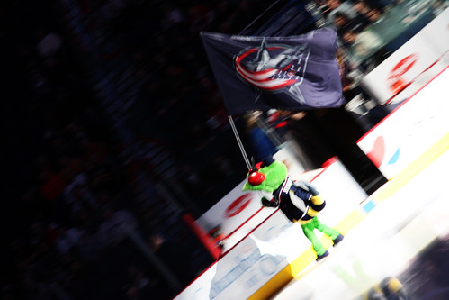 Stinger Carries The Flag
