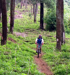 tangkuban single track