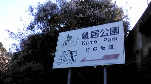 大竹市 亀居公園