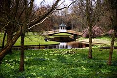 (Andreas Arnaa (Denmark)) Tags: nature creek copenhagen river denmark spring stream poetry magic poetic adventure fantasy