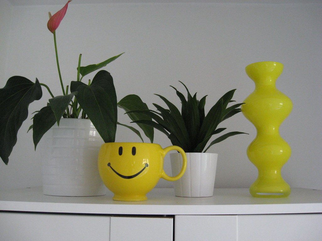 My New Yellow Vase - April 2010