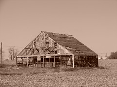 Near naked barn (David Sebben) Tags: west sepia barn rural naked branch iowa structure roofing sidewalls