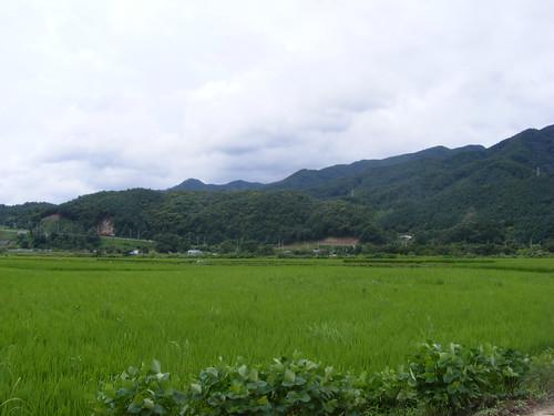 2008_0817Korea20023