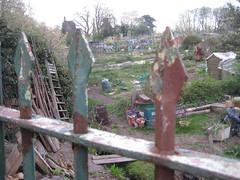 gardens. plots?