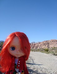 Murray in the desert 17/52