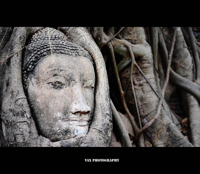 ayutthaya 08