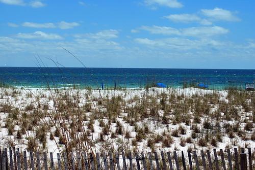 Pensacola Beach 6