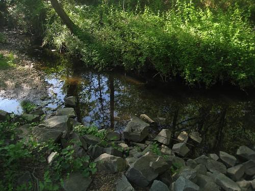 A local stream