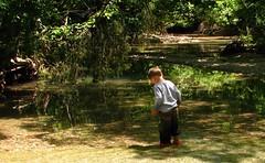 wading in the creek (circulating) Tags: water creek spring afternoon kentucky ky wading rtist landbetweenthelakes lbl firsthand demumberscreek thisisky