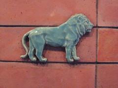 Löwe Türkis auf Klinker rot (ahmBerlin) Tags: berlin tierpark gwb löwe guessedberlin alfredbrehmhaus gwbhenry