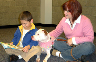 Pit bull therapy dog listening to a young boy read