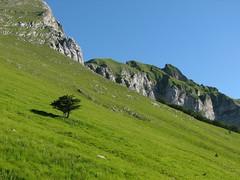 La Costa Pulita (Alpi Apuane) (Emanuele Lotti) Tags: italy costa mountain alps trekking landscape italia uomo tuscany toscana alpi montagna morto apuane croce naso valli pania apuan foce escursionismo pulita