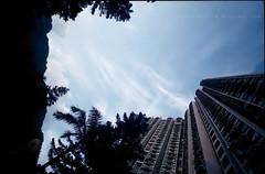 FujiSup100_0000037z (Steve only) Tags: ltm sky cloud film superia cosina voigtlander wide super f45 fujifilm 100 15mm swh heliar l39 leicacl m39 1545 leicascrewmount leicathreadmount canon8800f
