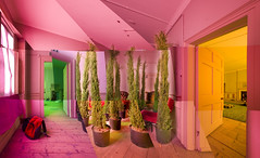 Fir / Conifer Tree Room 180 Composite Panorama - Brian Eno Speaker Flowers Sound Installation at Marlborough House (Dominic's pics) Tags: old uk pink flowers trees red panorama orange house holland building adam green art robert window leather festival composite one sussex wooden words high brighton rooms gallery doors tour chairs image interior room brian traditional may rick scottish duke grade exhibition illuminated east steine architect virtual eno installation sound speaker poet fir tall 12 poems marlborough backed 180 potted floorboards fabrica doorways listed 2010 conifer remodelled upholstered padded swivel wingback armchairs buttoned i