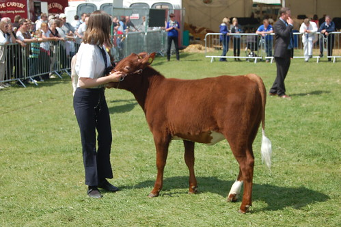 Northumberland County Show May 10 12