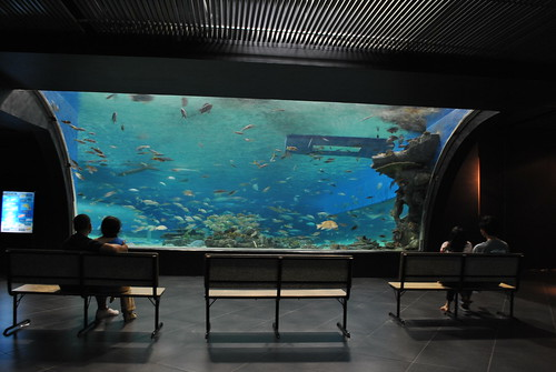 manila_ocean_park