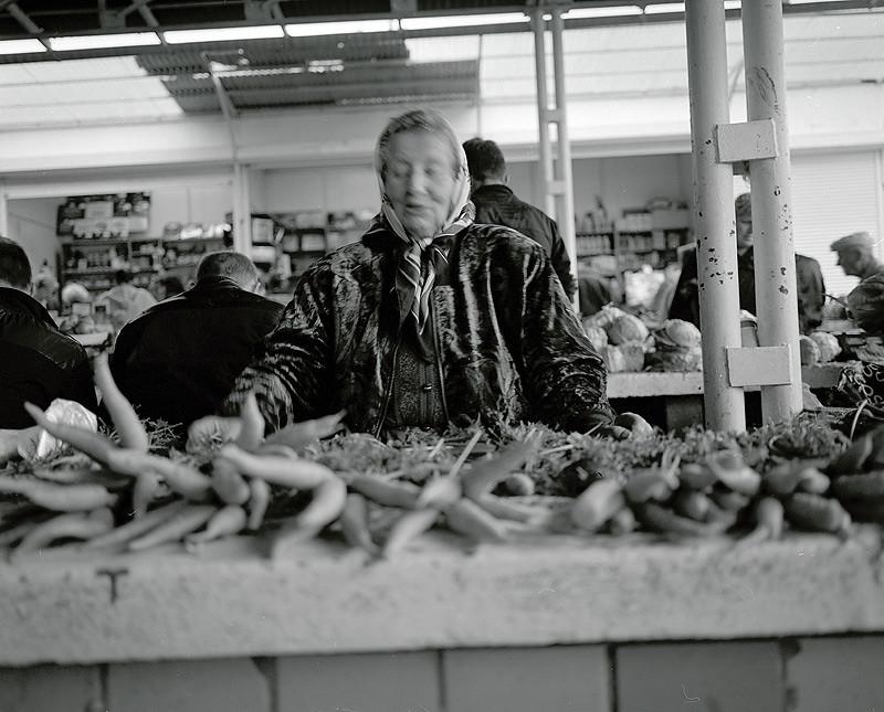 krakivsky / a marchewkę kupiłeś?