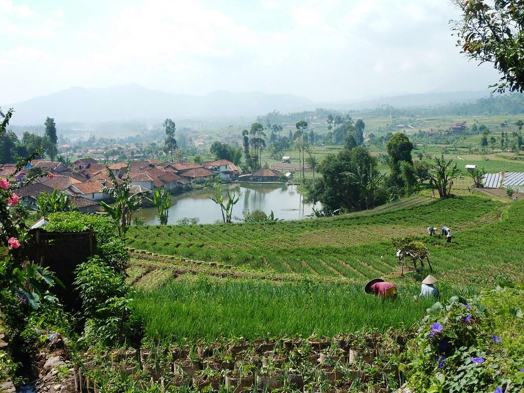 Java-Bandung-Region (48)