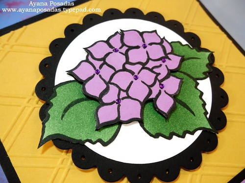 Birthday Hydrangea Flowers (2)