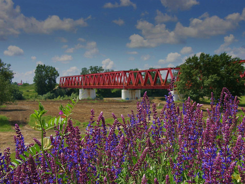 Red Bridge(2)