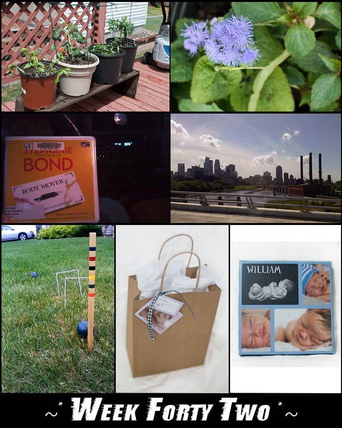 Week 42 blogsize